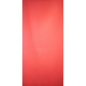 5069 CANYON 803 14гр красный 1.4м.