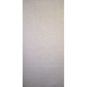 6016 Вин. кожа M White/181
