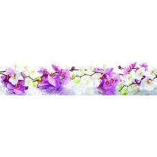 """Панель FR20 """"Нежные орхидеи"""" 2800*610*4мм"""