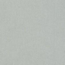 2542ГЛ Столешница глянцевая Алюминий 25х3000х600мм