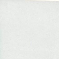 3810МТ Столешница матовая Белая 38х4200х600мм