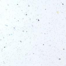 3855ГЛ  Столешница глянцевая Ледяная искра белая 38х4200х600мм
