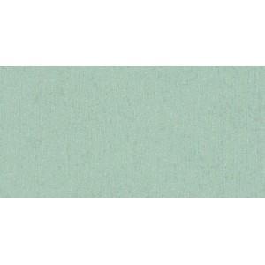 5042ГЛ  кромка глянцевая Алюминий 3000x50мм