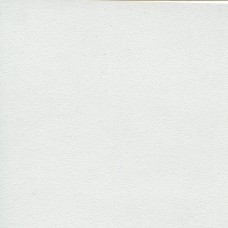 3810МТ  Столешница матовая Белая 38х3000х600мм