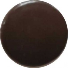 1772 Заглушка под евровинт тёмно-коричневая глянец №8-Б