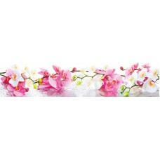 Панель ASP10 Орхидеи 2800*610*6мм