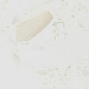 2964 Плинтус для столешниц AP850 1233 Белые камешки (фурнитура 1233) 37*24*3000мм (СКИФ 228)